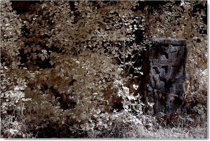 Charles baudelaire die fotografie und das moderne publikum
